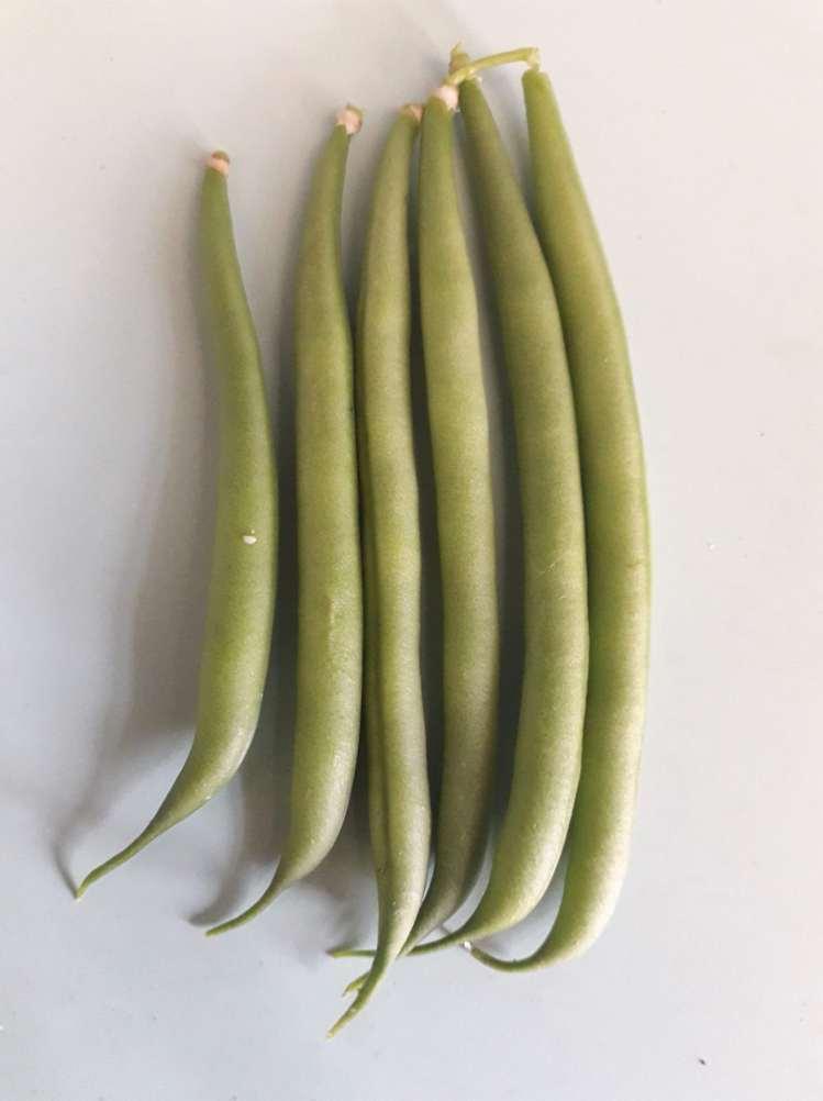 Best Vegetable: Virginia, Seeds Project